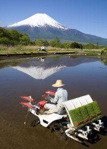 Hightech ontwikkelingen in de Japanse landbouw