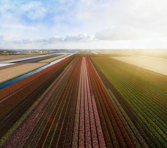 Nederland heeft een duurzaamheidssymbool nodig