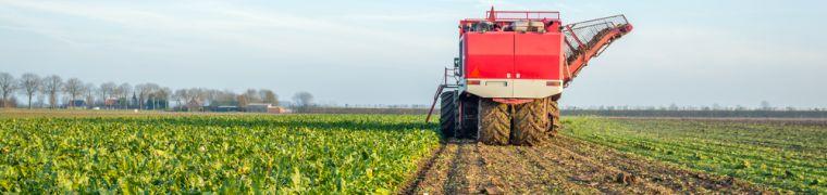 Duurzame productiesystemen als kans voor Nederland