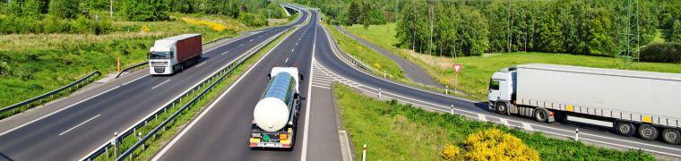 Stikstofbeleid vraagt om balans tussen economie en ecologie