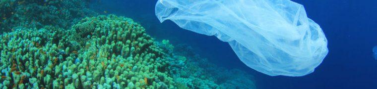 Biologisch afbreekbaar plastic