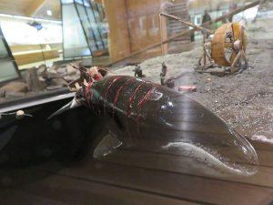 Museum walvisjacht op Spitsbergen