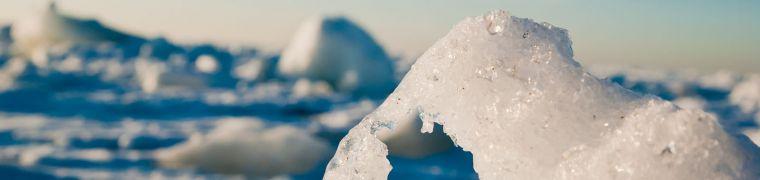 Klimaatverandering op Spitsbergen