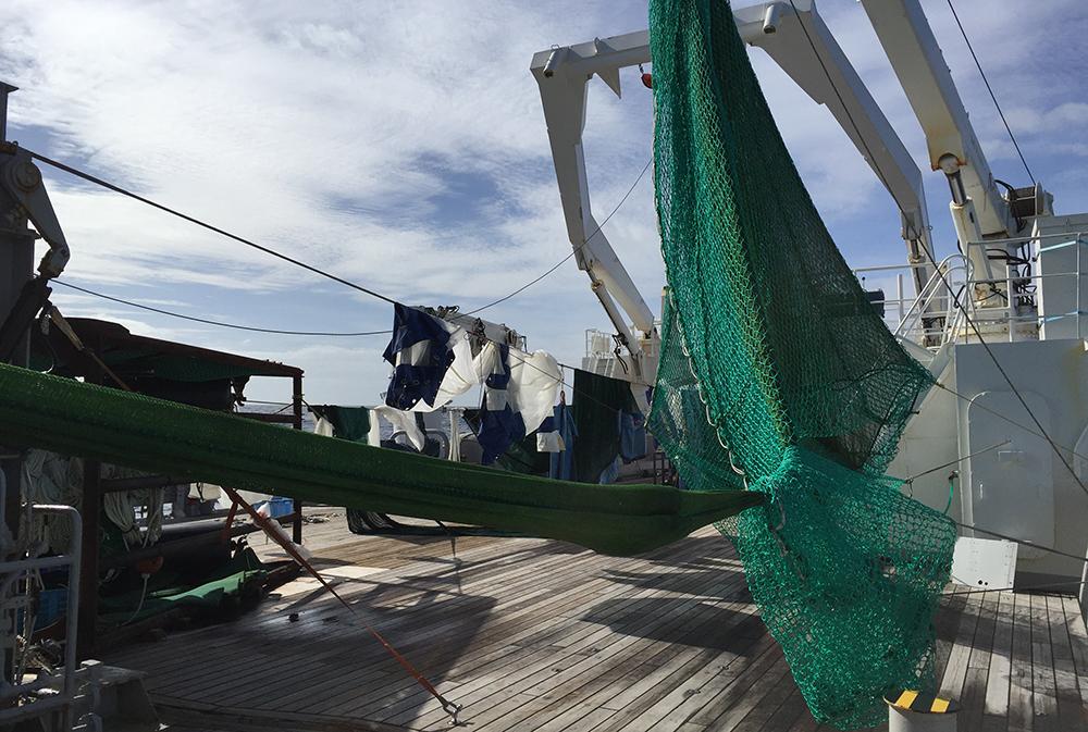 Alle netten zijn gewassen en hangen te drogen op het dek van Kaiyo-maru (© Fokje Schaafsma/FAJ)