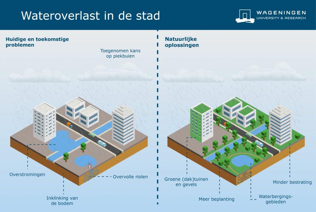Oplossingen voor wateroverlastproblemen in de stad