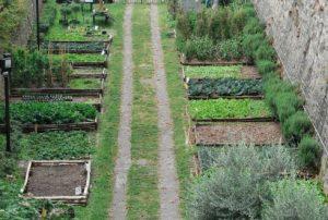 Sociale ondernemer stadslandbouw