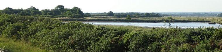 Bestuivers landschap