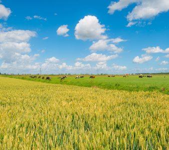 Overgang naar kringlooplandbouw is gezamenlijk proces