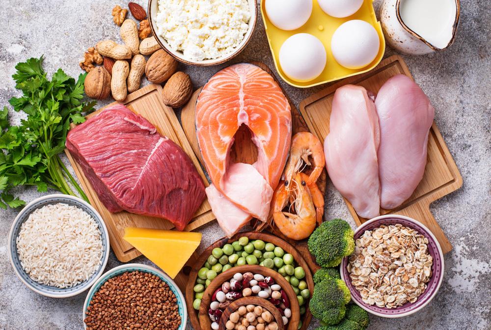 eiwitten plantaardig dierlijk